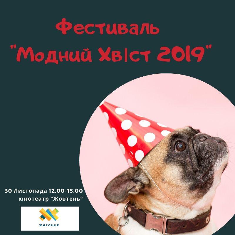 """У Житомирі відбувся фестиваль """"Модний Хвіст. 2019""""!"""