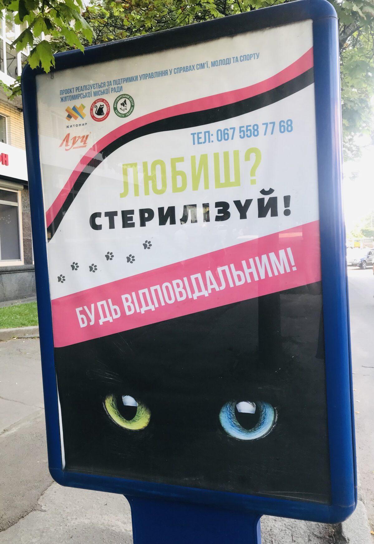 """""""Любиш? Стерилізуй!""""- лозунг соціальної реклами у Житомирі"""